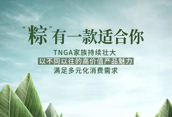 """端午节——TNGA家族""""粽""""有一款适合你"""