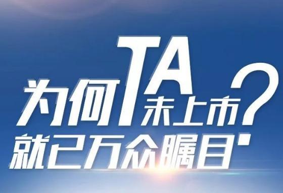 為何TA未上市,就已萬眾矚目?